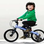 Segway Ninebot Kids Bike